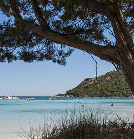 Sud Corse protège la nature